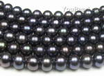 8.5-9.5mm freshwater black pearl strands wholesale, AA